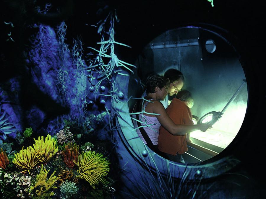 Biosphäre Potsdam Szenografie Konzeption leisureworkgroup Ausstellung